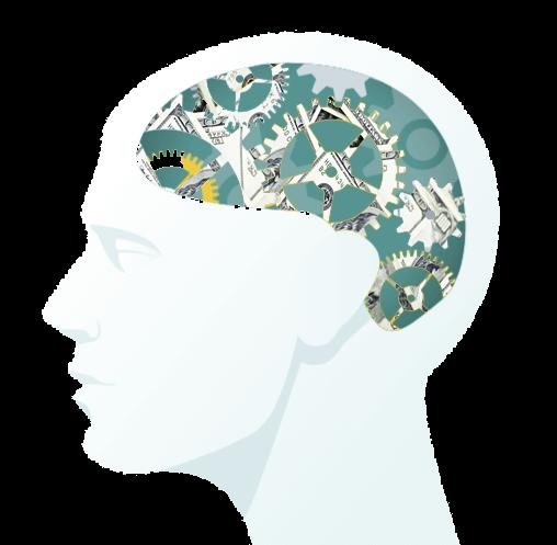 brains reward system